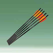 Archery & Bows